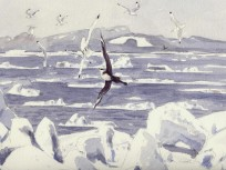 Painting from 'Arctic Flight'
