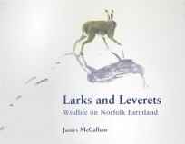 Larks and Leverets