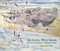 The Long, Wild Shore